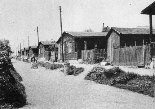 nouzova-kolonie-arizona-domy
