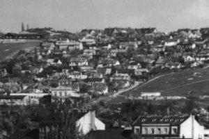 nouzova-kolonie-na-krejcarku-domy